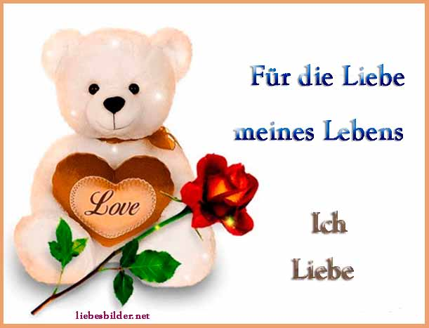 Ein Bär mit der Liebe